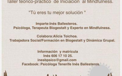 TALLER: INICIACIÓN AL MINDFULNESS. Encontrar el Equilibrio en el Día a Día